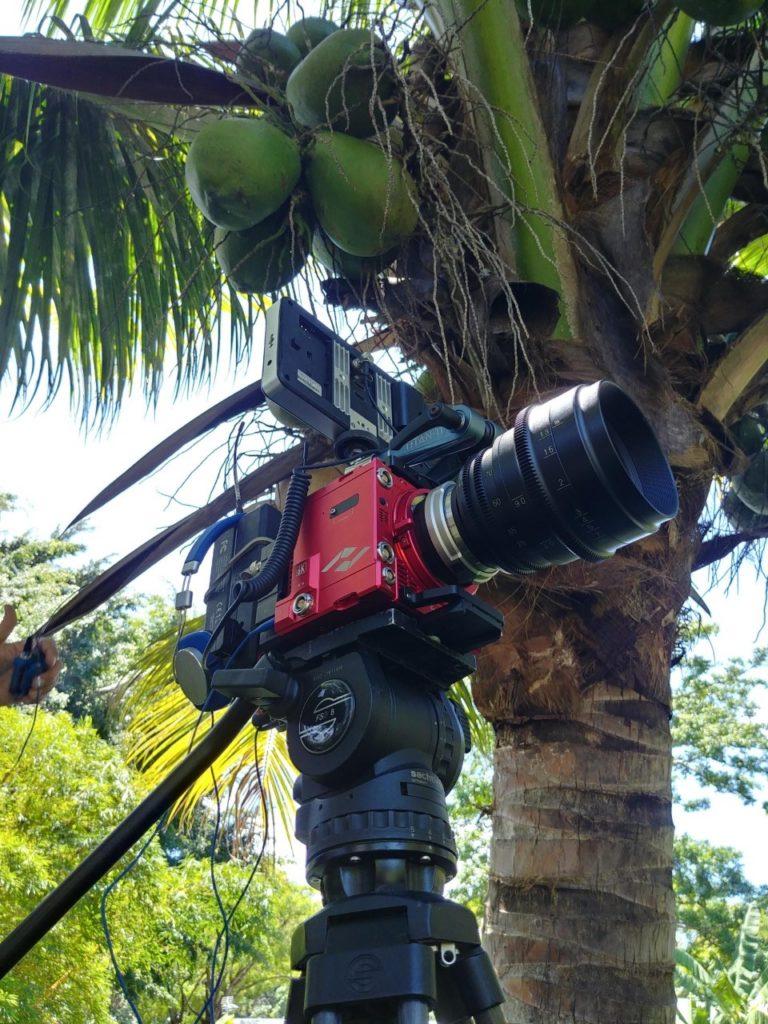 Camera, JP Joaquim