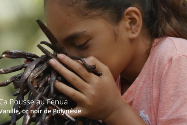 Documentaire - vanille or noir de polynésie